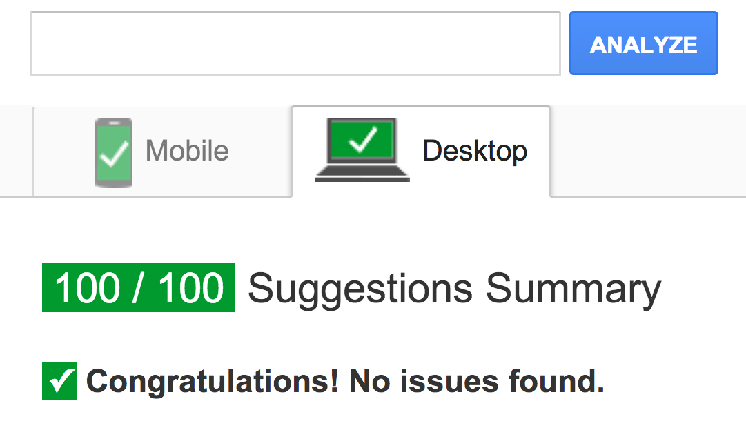 Google page speed insight score 100