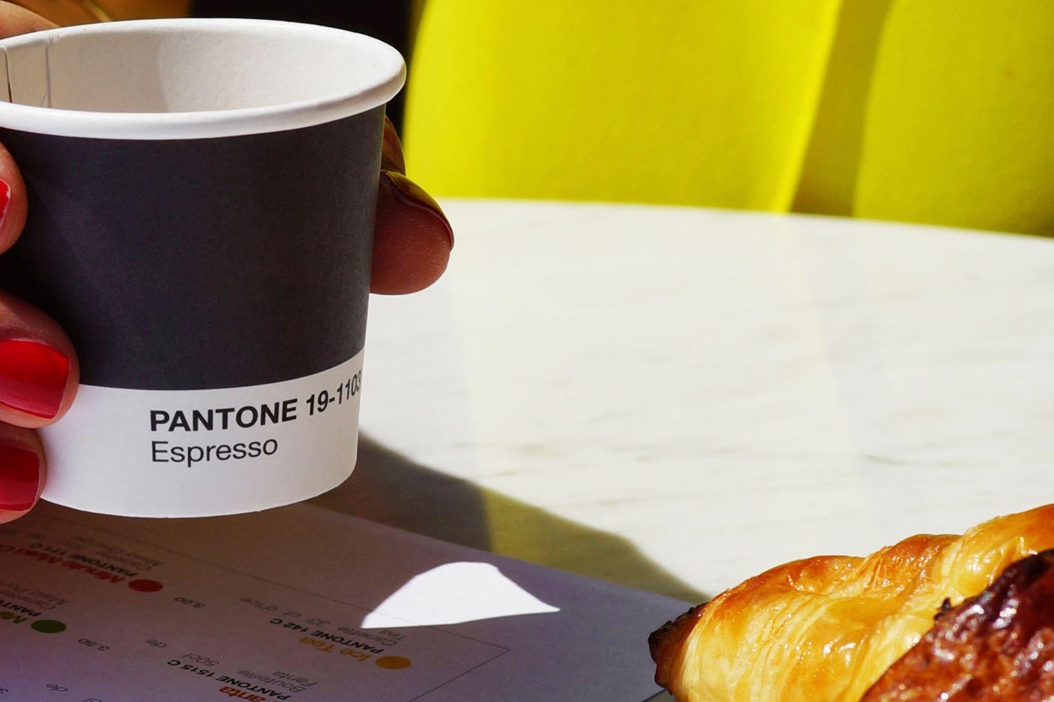 PANTONE CAFE 45a